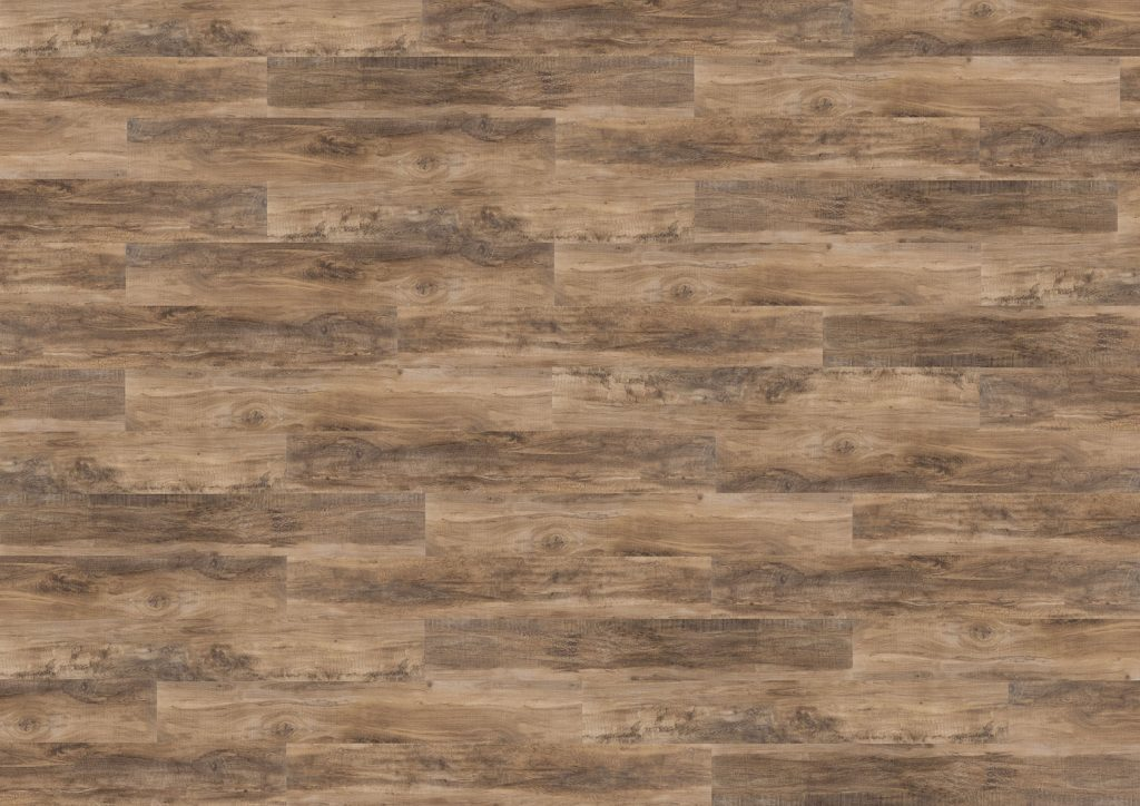 Composition of chevalier oak tco-05 from the tradition collection
