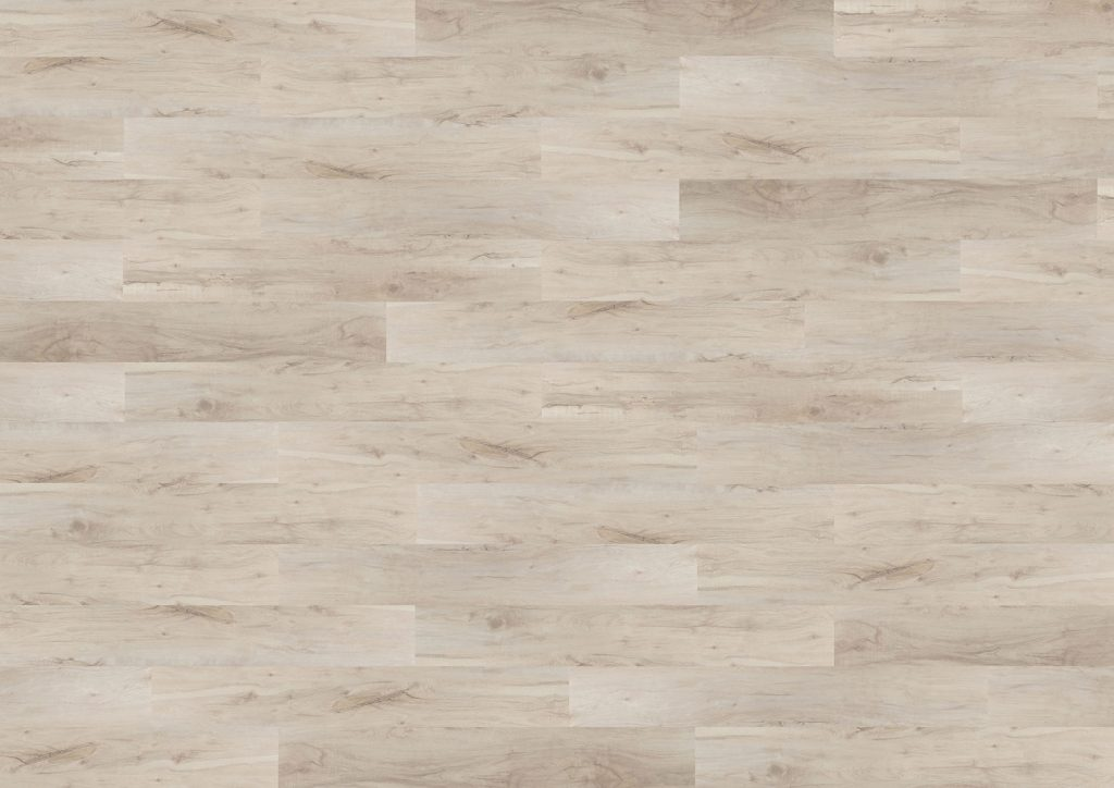 Composition of holm oak tho-03 from the tradition collection