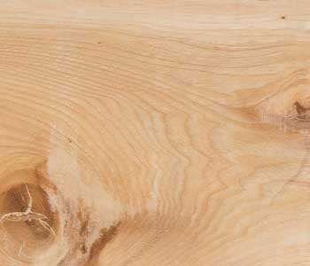 Olive Wood TOW-02 from the Harmony Collection VTC, thanks to our technology it can be used in floors and walls.