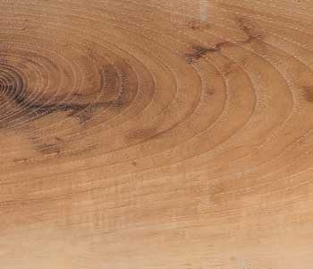 Olive Wood TOW-04 from the Harmony Collection VTC, thanks to our technology it can be used in floors and walls.
